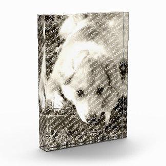Create Your Own Acrylic Block Print Gift Template Acrylic Award