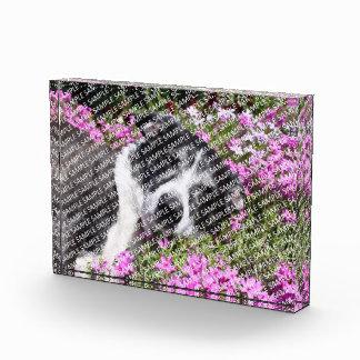 Create Your Own Acrylic Block Print Gift Template Award