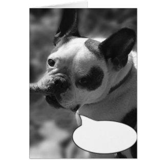 Create Your Own Caption, Bulldog Card