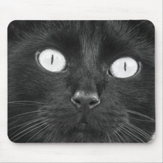 Create Your Own Cat Photo-Mousepad Mouse Pad