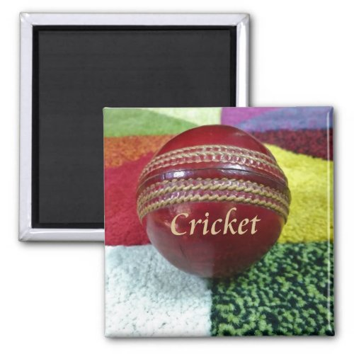 Create Your Own Cricket Latest Tournament Magnet
