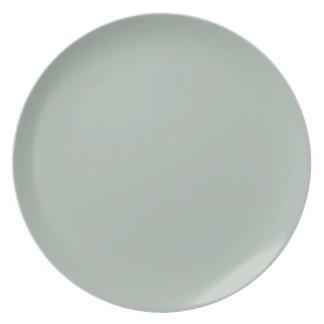 Create Your Own Custom Ash Grey Plate