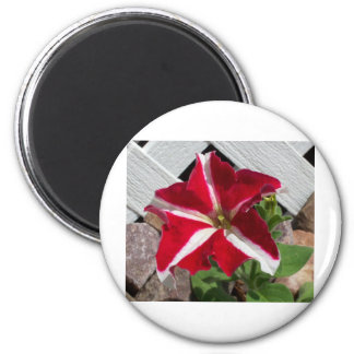 Create Your Own Custom Design! 2 Inch Round Magnet