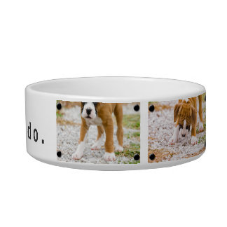 Create Your Own Custom Image & Text Dog Food Bowl