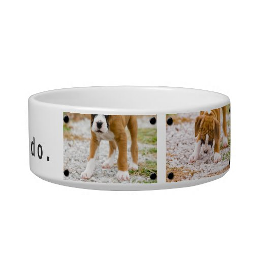 Create Your Own Custom Image  Text Dog Food Bowl