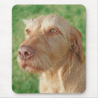 Create Your Own Custom Pet Photo Mousepad