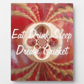Create Your Own Eat Drink Sleep Dream Cricket Plaque