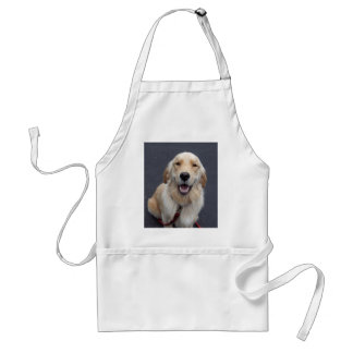 Create your own expressions!  Easy to use tools! Adult Apron