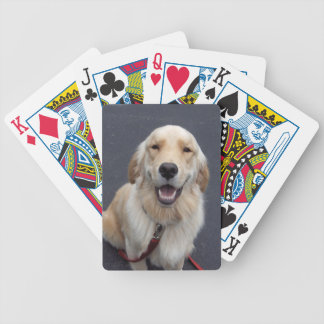 Create your own expressions!  Easy to use tools! Playing Cards