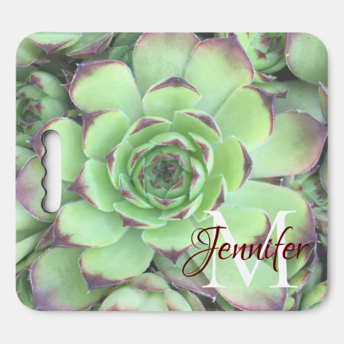 Create Your Own Faded Photo Personalized Monogram Seat Cushion