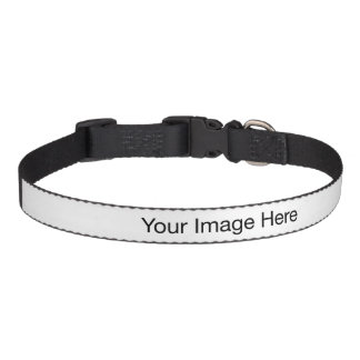 Create Your Own Medium Dog Collar