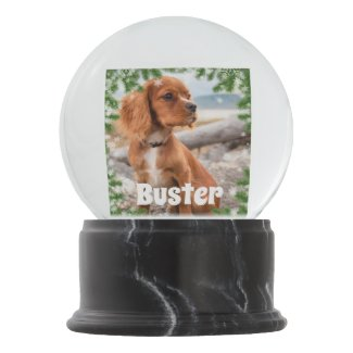 Create Your Own Personalized Photo Snow & Pine Snow Globe