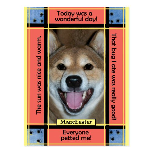 Create Your Own Pet Dog Cat Photo Funny Text Postcard