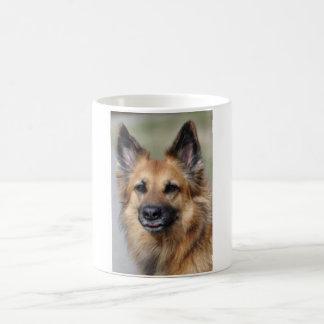 Create your own pet photo coffee mug