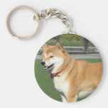 CREATE YOUR OWN PET PHOTO KEYCHAIN