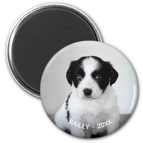 Create Your Own Pet Photo Name and Year Magnet