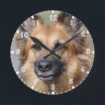 "Create your own pet photo round clock<br><div class=""desc"">Create your own pet photo. Customize and personalize as desired.</div>"
