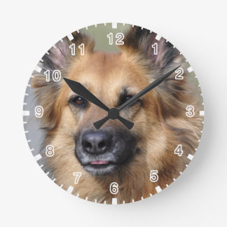 Create your own pet photo round clock