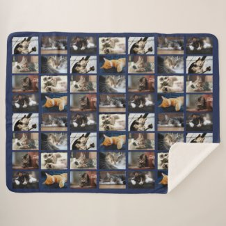 Create Your Own Photo Collage 8 Pictures on Navy Sherpa Blanket