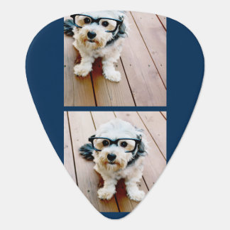 Create Your Own Photo Collage Navy 4 Pictures Guitar Pick