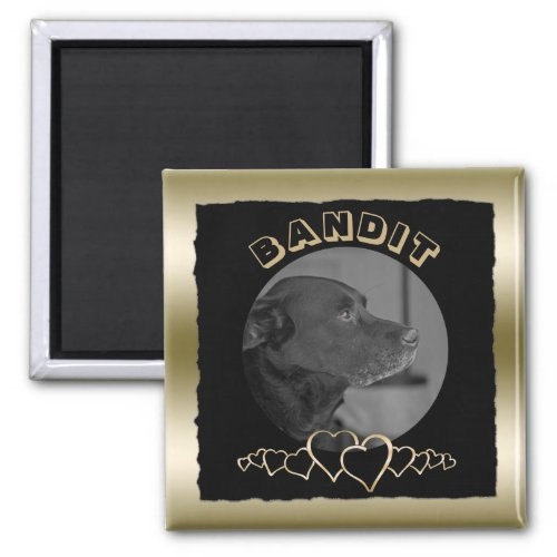 Create Your Own Photo Gold  Custom Pet Keepsake Magnet