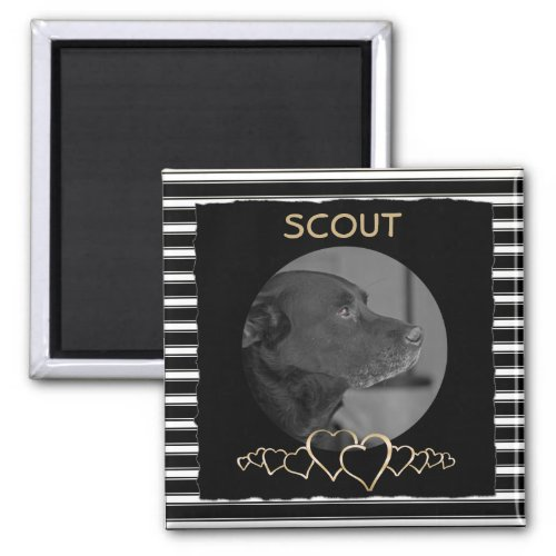 Create Your Own Photo  Personalized Pet Keepsake Magnet