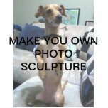 "Create Your Own Photo Sculpture<br><div class=""desc"">Create your own photo Sculpture Whether on a desk,  at the office or in the living room,  photo sculptures bring your memories to life. Made of acrylic with a black stand,  they are a great conversation piece. Final size is approximate and depends on cut-out size of image.</div>"