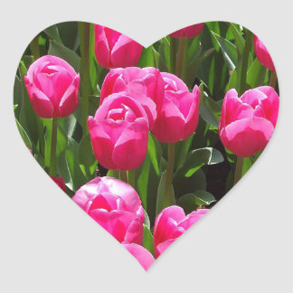Create your own pink tulip background gifts heart sticker