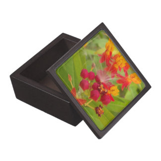 Create Your Own Stunning Floral Customize Product Gift Box