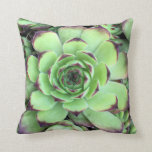 "Create Your Own Two Sided Photo Throw Pillow<br><div class=""desc"">Add your own two photos to create your own custom photo throw pillow. The sample images is a succulent on one side,  and succulents on the other.</div>"