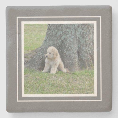 Create Your Own Your Photo Farmhouse Gray  White Stone Coaster
