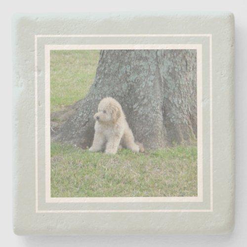 Create Your Own Your Photo Farmhouse Green  White Stone Coaster