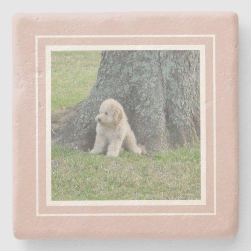 Create Your Own Your Photo Farmhouse Pink  White Stone Coaster