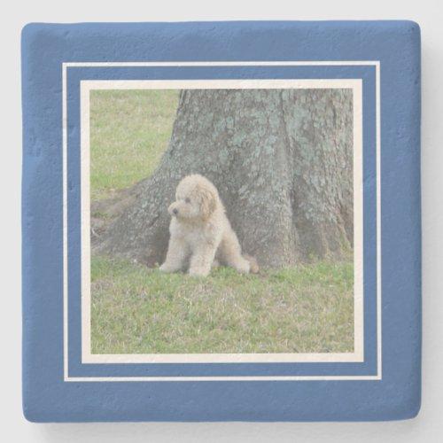 Create Your Own Your Photo Keepsake Blue  White Stone Coaster