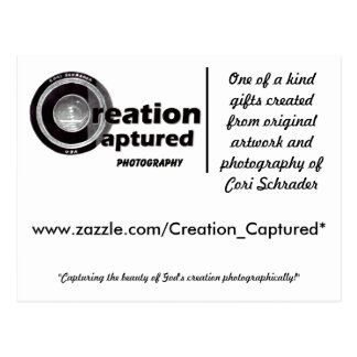 Creation Captured Photography Postcard