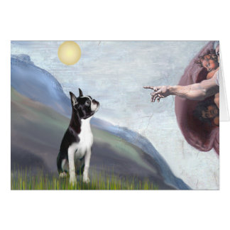 Creation of the Boston Terrier (#3) Greeting Card