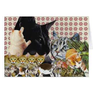 Creative Cats Greeting Card