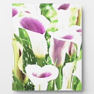 Creative colors Callas Plaque