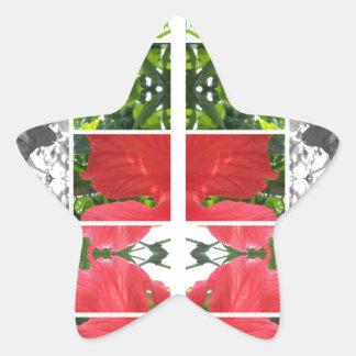 creative design star sticker
