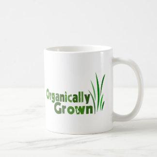 Crecido orgánico taza básica blanca