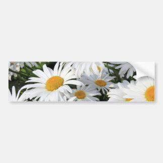 Crecimiento de flores de la margarita blanco pegatina de parachoque
