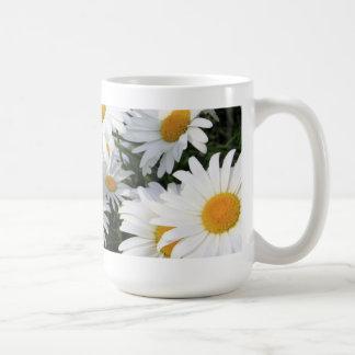 Crecimiento de flores de la margarita blanco tazas