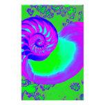 Crecimiento del color, cáscara del nautilus  papeleria