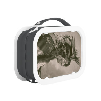 Cree Indian Lunch Box