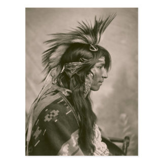 Cree Indian Postcard