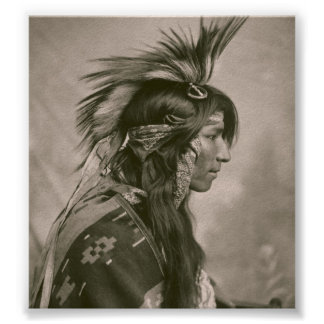 Cree Indian Poster