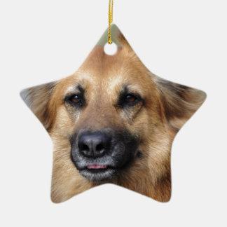 Cree su propia foto del mascota ornamento de navidad