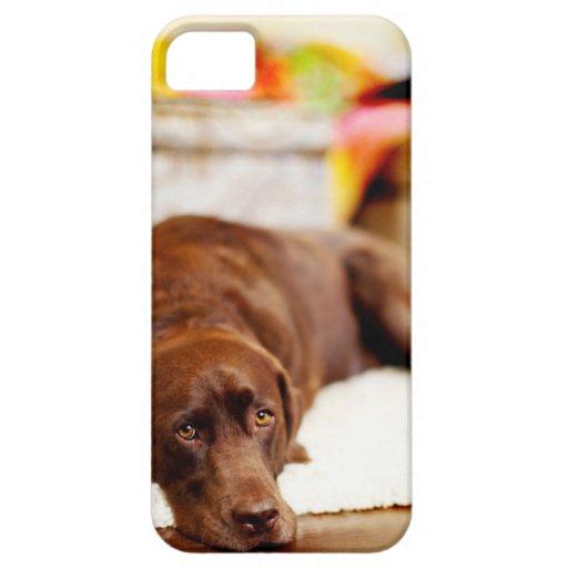 Cree su propio personalizado añaden el caso del iPhone 5 carcasas