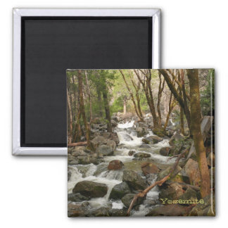 Creek at Bridal Veil Falls, Yosemite Magnet