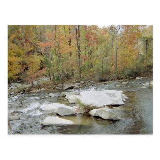 Creek At Chimney Rock, North Carolina Postcard